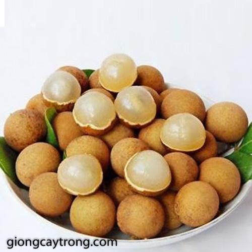 nhan-muon-hung-yen2