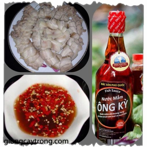 nuoc-mam-ong-ky1