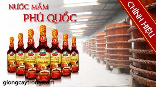 nuoc-mam-phu-quoc2