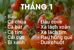 thang 1