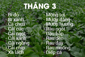 thang 3