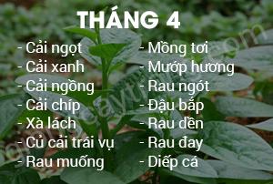 thang 4