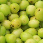 Dinh dưỡng và cách chăm sóc cây táo chua